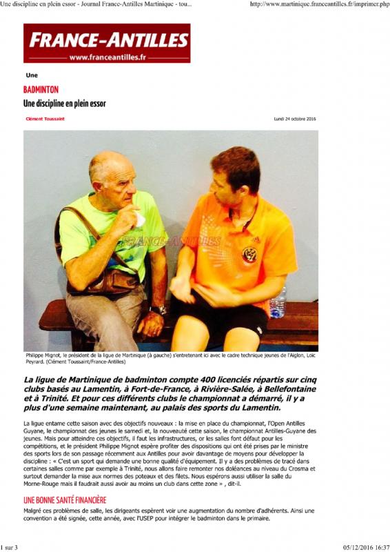 Article france antilles badminton une discipline en plein essor 1