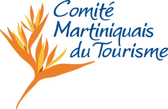 Cmt logo positif web